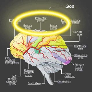 the mind exploring the psychological history of god s inner journey books are brains destined for religion center for inquiry