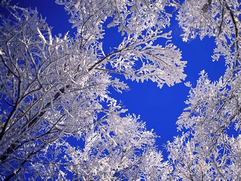 beautiful winter hd wallpapers winter scenes for desktop