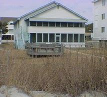 myrtle vacation homes pet friendly pet friendly winter rentals available in myrtle