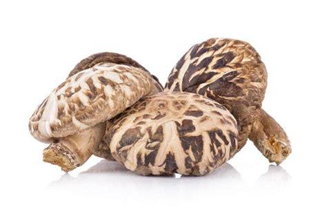 how many calories in a how many calories in mushrooms 005 grow your way www tinyplantation