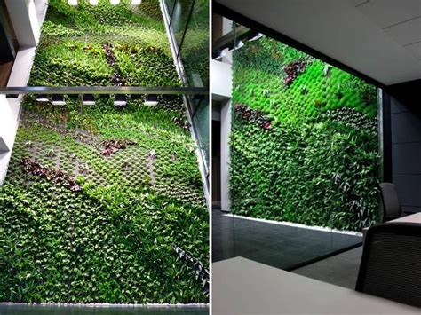spains largest vertical garden cleans indoor office air