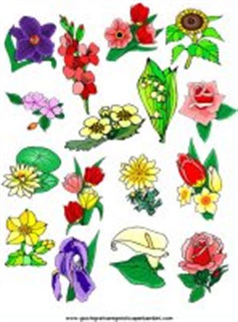 fiori colorati da stare gratis fiori colorati da ritagliare 28 images decorazioni