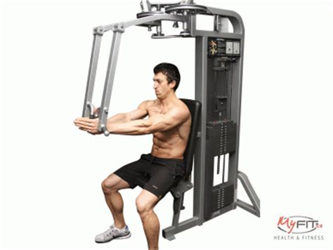 Pec Deck Fly by Machine Flyes Pec Deck Exercise Myfit