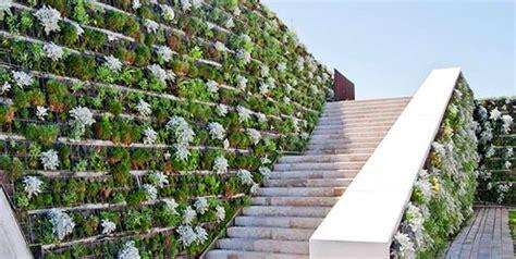 imagenes muros verdes guia 191 qu 233 son los muros verdes hydro environment