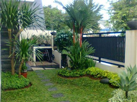22 Desain Taman Mungil pohon hias palem cocok untuk taman rumah minimalis