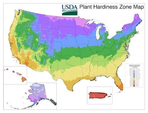 find my gardening zone gardening basics how to find your gardening zone