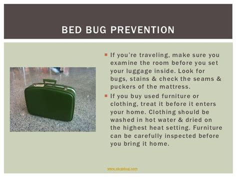 can bed bugs travel on clothes bed bug prevention the best 28 images of remedies for bed