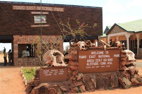 best safari in kenya 10 best safari parks in kenya hello bmw