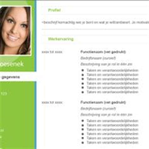 Cv Sjabloon Met Foto 1000 Images About Cv Templates On Professional Cv Cv Template And Psd Templates