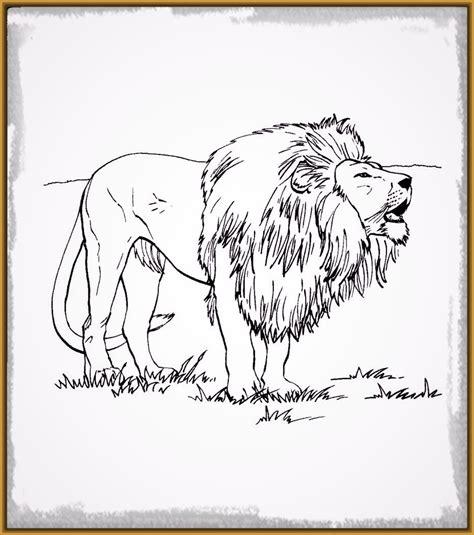 imagenes de leones para colorear leon rugiendo dibujo www imgkid com the image kid has it
