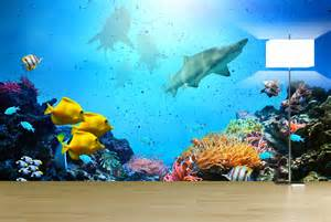 Underwater Wall Mural Exotic Underwater Wall Mural Ideas For Your Living Rooms