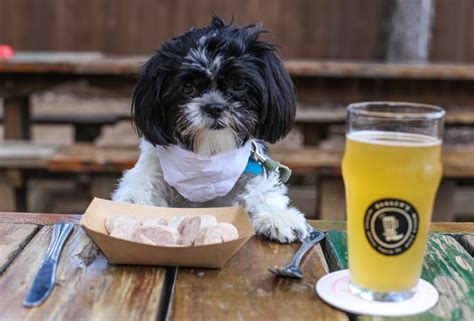 can dogs eat steak friendly restaurants menus for dogs
