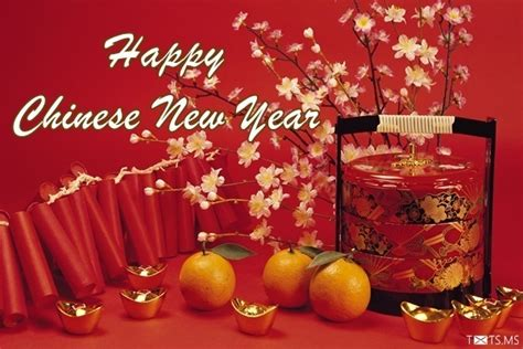 happy chinese new year wishes messages images for