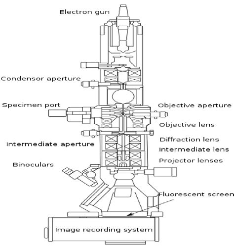 diagram of electron microscope scanning electron microscope schematic diagram wiring