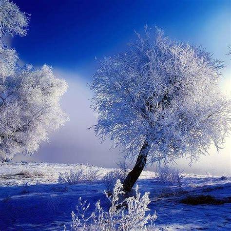 imagenes bonitas d paisajes para descargar variadas im 225 genes de paisajes hermosos para descargar y