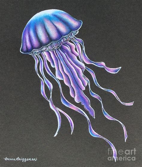 Drawing Jellyfish by My Jellyfish Drawing By Breena Briggeman