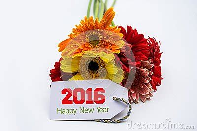 new year white flower happy new year 2016 with flower and tag isolated on a