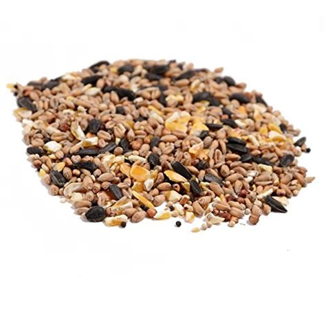 wild bird food 20kg all season friendly fungi
