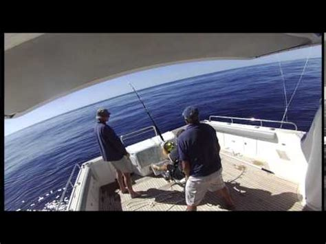 red boat fishing charters auckland big game fishing trip on auckland charter boat exodus