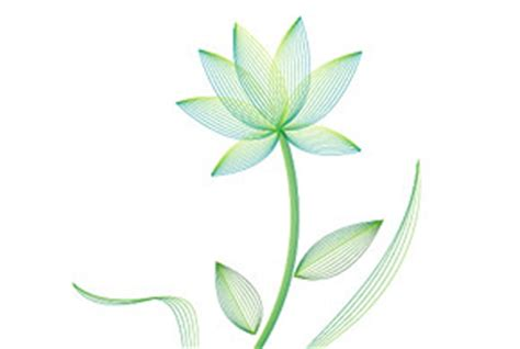 tutorial vector flower learn how to create a stylish vector flower with the blend
