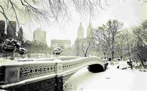 winter garden parking winter in central park wallpaper unsorted other