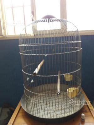 accessori per gabbie pappagalli gabbie pappagalli posot class