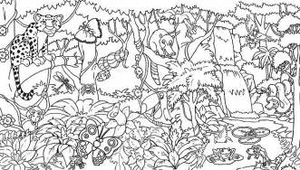 Rainforest coloring pages endangered species coloring pages for free 1