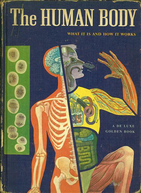 the human body 436 msn1 the human body machinatorium