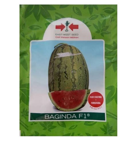 Benih Buah Semangka benih panah merah semangka baginda f1 80 biji jual