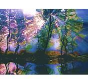 Trippy Nature Wallpaper  WallpaperSafari