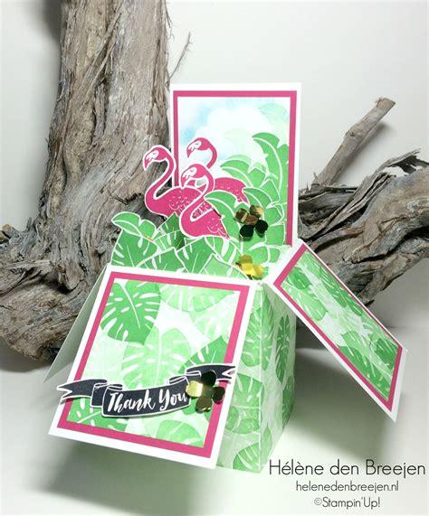 flamingo pop up card template flamingo box card flamingo box and cards