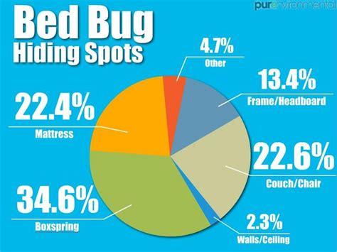 bed bug symptoms    treat  bite bed bug guide
