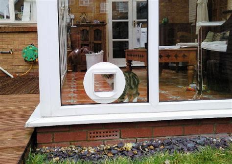 cat flaps in glass doors cat flap fitting through walls doors upvc panels and glazed units