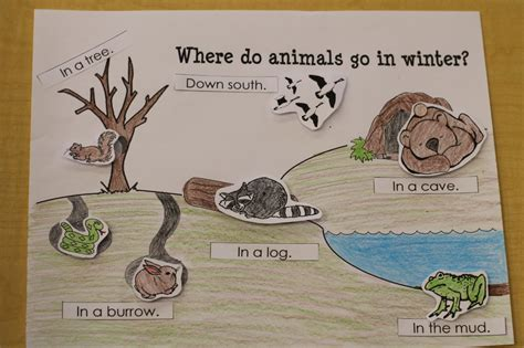 where the animals go creative tots preschool blog