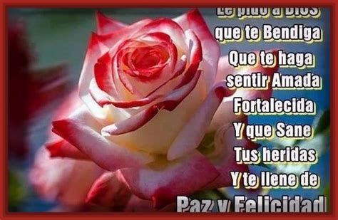 imagenes de rosas moradas con frases imagenes lindas de rosas con frases de amor archivos