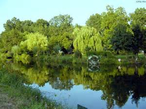 nature protection de la nature vivre la nature imgstocks