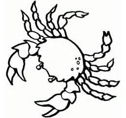 sea creature coloring pages 65 sea creature templates printable crafts colouring