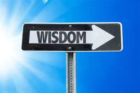 How To Live A Search For Wisdom From Call To Wisdom The Twelve