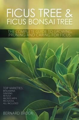 bonsai the complete guide b000iobreq ficus tree and ficus bonsai tree the complete guide to growing pruning and caring for ficus