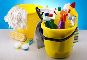 Bathroom Cleaning Accessories How To Teach Your 1st Grader To Clean A Bathroom The Organized