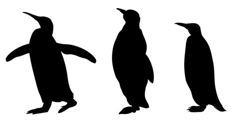 printable zoo animal silhouettes animal silhouette pictures cliparts co