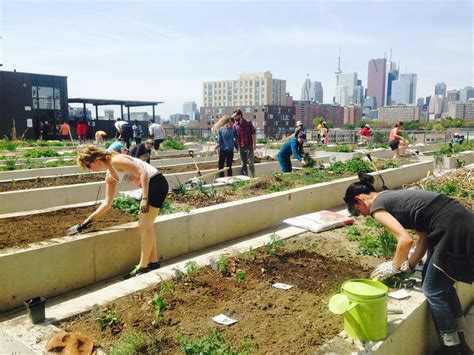 Does your Condo have a Community Garden?