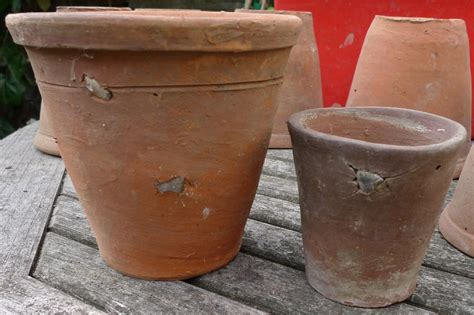 Handmade Terracotta Pots - the of weeds garden withoutdoors