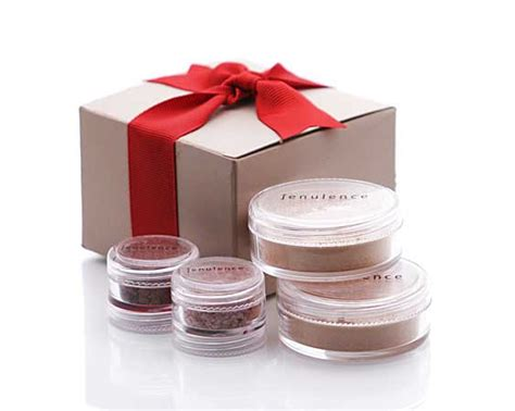 Mineral Makeup Gifts For by Jenulence Skin Mineral Makeup Gift Set