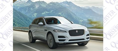 Fabienne Anton Dissertation by Motoring Ta Bay Jaguar F Pace This Cat Is A Thriller