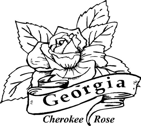 50 state flowers coloring pages for kids
