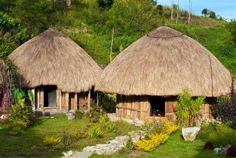 honai rumah adat papua pesona nusantara