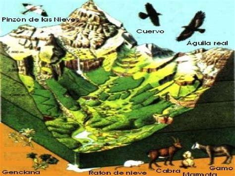geografia de mexico 1 geografia de mexico y el mundo