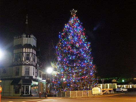 downtown for the holidays ridgewood tree lighting friday