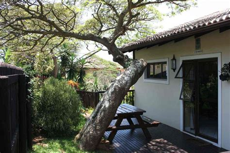 Crooked Tree Cottage by Crooked Tree Cottage Durban South Africa